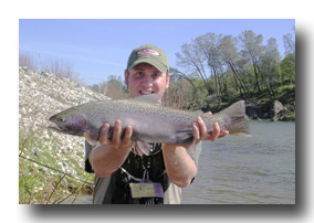 Yuba River rainbow